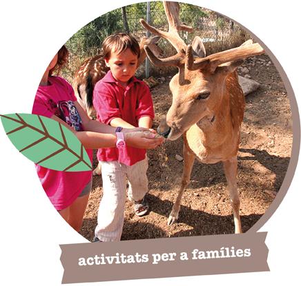 Activitats per a famílies